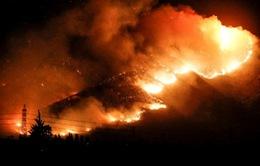Chile ban bố tình trạng khẩn cấp do cháy rừng