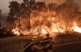 Mỹ sơ tán hàng nghìn người do cháy rừng