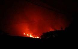 Hà Nội: Cháy rừng phòng hộ ở xã Nam Sơn, huyện Sóc Sơn