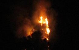 Cảnh báo nguy cơ cháy rừng do nắng nóng kéo dài
