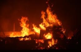 Cháy lớn ở Hoằng Hóa, Thanh Hóa, thiệt hại khoảng 10 tỷ đồng