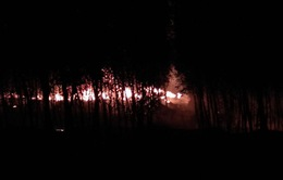 Tạm giữ đối tượng nghi gây ra vụ cháy xưởng tái chế nhớt
