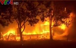 Người Việt ở California chia sẻ về vụ cháy rừng