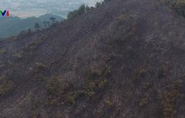 Điều tra nguyên nhân vụ cháy rừng ở Sóc Sơn, Hà Nội