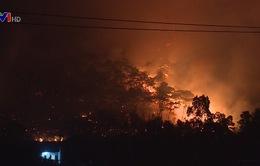 Lúng túng trong công tác phòng chống cháy rừng ở Sóc Sơn
