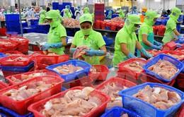Xuất khẩu nông lâm thủy sản đạt 2,54 tỷ USD trong tháng 1/2017