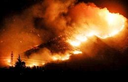 Chile: Cháy rừng lớn nhất trong 50 năm