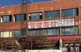 Hàn Quốc đóng cửa chợ bán thịt chó lớn nhất