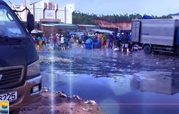 Phú Yên: Người dân kêu than vì chợ cá ô nhiễm bốc mùi hôi thối