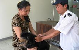 Phú Yên cảnh báo bệnh dại mùa nắng nóng