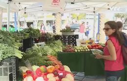Chợ nông trang - Cứu cánh cho các trang trại hữu cơ gia đình Mỹ