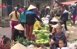 Phiên chợ cuối năm của người trồng rau