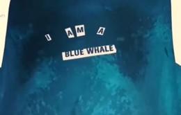 """Sự thật hãi hùng về trò chơi tử thần """"Thử thách cá voi xanh"""""""