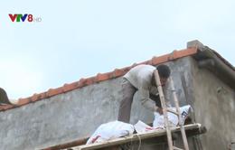 Phú Yên: Người dân chủ động chằng chống nhà cửa