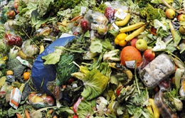 Sáng kiến độc đáo chống lãng phí thực phẩm quá hạn