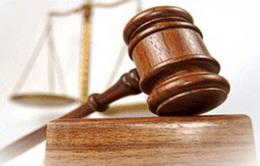 Cần hoàn thiện pháp luật về phòng chống tham nhũng