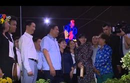 TP.HCM: 220 gian hàng tham gia Hội hoa Xuân Bình Điền 2017