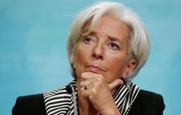 Các thể chế tài chính toàn cầu hối thúc thương mại mở