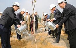 Chủ tịch nước phát động Tết trồng cây