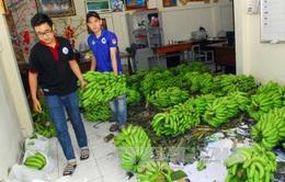 Hàng loạt nông sản phải nhờ giải cứu