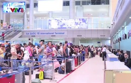 Khánh Hòa: Tour bay thẳng đầu tiên Cam Ranh - Hàn Quốc