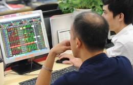 Lao theo cổ phiếu hủy niêm yết, rủi ro nhiều hơn cơ hội