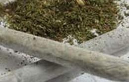 Bắt quả tang 4 đối tượng thuê khách sạn sử dụng ma túy đá và cỏ Mỹ