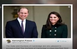 Cơn sốt từ công bố chào đón đứa con thứ 3 của gia đình Hoàng gia Anh