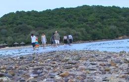 Con đường đi bộ trên biển đến đảo Nhất Tự Sơn