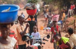 Hơn 250 người bị sát hại tại CHDC Congo