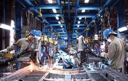 TP.HCM xây dựng cơ sở dữ liệu cho DN công nghiệp hỗ trợ