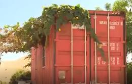 Vũng Tàu: Khó xử lý nhà container dựng trái phép trên đất quy hoạch