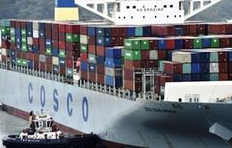 Cosco trở thành hãng vận tải biển lớn thứ 3 thế giới