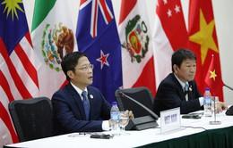 Hiệp định TPP, CPTPP có điểm gì giống và khác nhau?