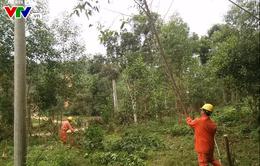 Cảnh báo mất an toàn lưới điện mùa mưa