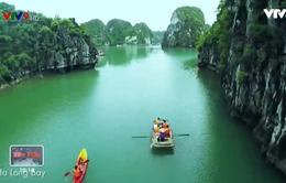 Combo du lịch giá rẻ: Xu hướng mới trong du lịch