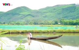 Du lịch cộng đồng - hướng đi mới của du lịch Thừa Thiên Huế