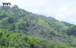 Thừa Thiên Huế: Thiếu đất sản xuất ở vùng cao do quy hoạch chậm
