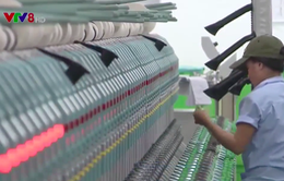8 tháng có 62 dự án được cấp phép đầu tư tại Quảng Ngãi