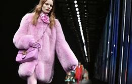 """Gucci nói """"không"""" với chất liệu lông thú từ năm 2018"""