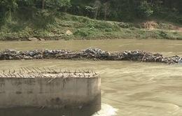 Quảng Nam: Người dân huyện Hiệp Đức mỏi mòn chờ cầu dân sinh