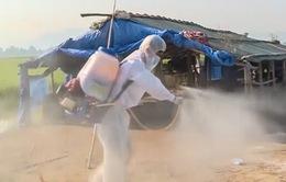 Thừa Thiên Huế: Tăng cường phòng chống dịch bệnh trên gia súc, gia cầm