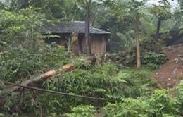 Người dân Quảng Ngãi khẩn trương lánh nạn trong đêm do lo ngại sạt lở