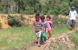 Gian nan con chữ vùng sạt lở núi ở Quảng Nam