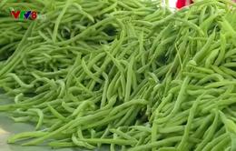 Lâm Đồng đầu tư trung tâm sơ chế sau thu hoạch