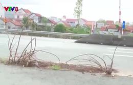 Nguy hiểm từ những nắp cống bị vỡ trên Quốc lộ 1 qua Phú Yên
