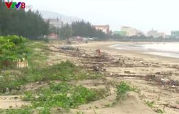 Rác thải ngập bờ biển Đà Nẵng