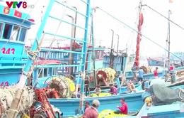 Khánh Hòa: Khắc phục tình trạng khai thác thủy sản trái phép