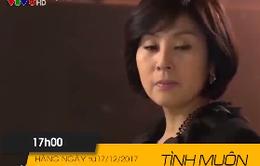 """Phim truyện """"Tình muộn"""" (17h hàng ngày trên VTV8)"""