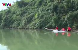Ngăn chặn vận chuyển lâm sản trái phép thượng nguồn sông Hương